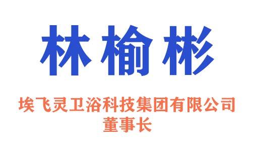 埃飞灵卫浴科技集团有限公司董事长