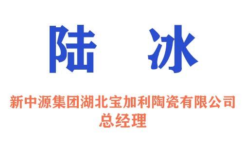 新中源集团湖北宝加利陶瓷有限公司总经理